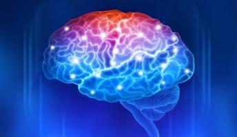 本日の思考実験『右脳で見るもの、左脳で見るもの』