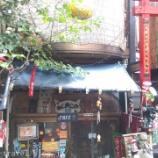 『東京近郊旅行記5 根津散策、猫の喫茶店「ねんねこ家」と鳥居が凄い根津神社に行ってみた』の画像