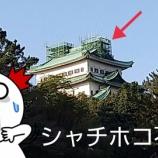 『【出勤ラン 7キロ】名古屋ウィメンズマラソン コース見回りRUN!開催に向けて、じんわり動いておりますぞ!(*・ω・)ノ 金のシャチホコ不在&オオカンザクラ(大寒桜)満開デス♪』の画像