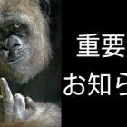 『重要なお知らせ』の画像