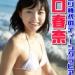 川口春奈がティーンアイドル時代のロリ貧乳ビキニ水着グラビア完全まとめ 画像60枚