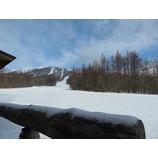 『今日も穏やかな朝。スキー日和です!』の画像