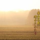 『黄金の里』の画像