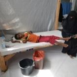 『史上最大のコレラアウトブレイク発生中』の画像