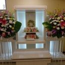 茨城町桜の郷の愛猫ロコちゃんの個別火葬【ペット火葬・霊園・茨城町】