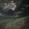 深夜の公園怖すぎワロタ