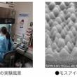シャープ、液晶テレビの技術で新型コロナウイルスを不活化--蛾の目構造模した「モスアイ技術」