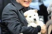 韓国の朴クネ元大統領、公邸に愛犬を置き去りにし非難殺到www