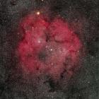 『ケフェウス座のIC1396散光星雲』の画像