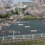 『ボート競技観戦ガイドツアー5月26日に開催。戸田ボートコースを舞台に開催される第97回全日本選手権大会をガイド付きで観戦する企画です。参加費無料。募集が始まりました!』の画像
