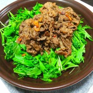 牛肉たっぷり水菜のサラダ