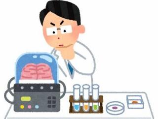 脳の容量は17.5TBもあるってのが信じられん