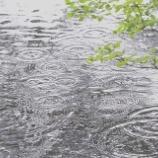『雨の多い秋』の画像