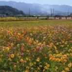 風景写真家・西川貴之の気まぐれブログ