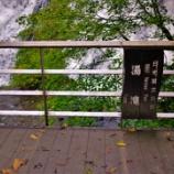 『🐸湯滝🐸』の画像