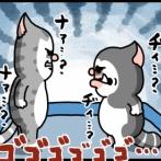 キャットタワー城を守りぬいた猫