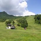 『暑さ逃れて山田牧場』の画像