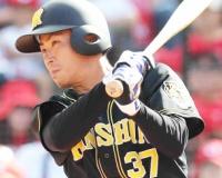 【悲報】阪神森越、フェニックスリーグで4割打ったのに戦力外にされる