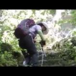『福岡県東峰村岩屋神社岩巡り』の画像