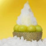 『メロン好き必見!まるごとメロンを使ったかき氷&パンケーキが気になる』の画像
