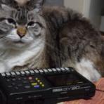 BGM制作所 「Sound Control Production」のブログ