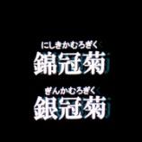 『第3回真駒内花火大会3』の画像