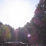 『綺麗で強い朝の光』の画像