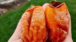 【中国】漬物にとどまらず…韓国人が「柿も韓国のものだ」と言い張っている