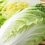『白菜使った料理でなんかおススメある?』の画像