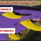 『トライフィンのボードでのフィンサイズチョイス例』の画像