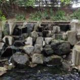 『新緑の玉川上水Ⅳ;玉川上水駅~東大和市駅』の画像
