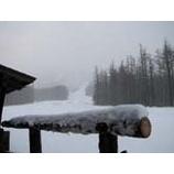 『今日からオープンします。雫石スキー場!』の画像