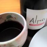 『アルパカの赤ワイン~「サンタ・ヘレナ・アルパカ・カベルネ・メルロー」 とうさぎの陶器ワイングラス』の画像