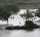 水没した町でウエークボードを楽しむ人々、サイクロン上陸のオーストラリア