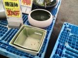 『睡蓮鉢を求め園芸店を彷徨う』の画像