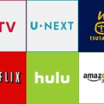 動画配信サービスってAmazonプライムとNetflixだけで良いよな