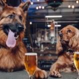 『犬休暇のある会社』の画像