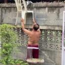 塀の上から下りられない猫の場合【動画】タイ