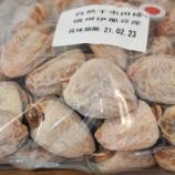 『国東の食環境(325)市田柿』の画像