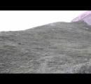 【動画】丘の上から盛大に転がり落ちてくるクマが話題に