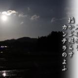 『月明かり』の画像