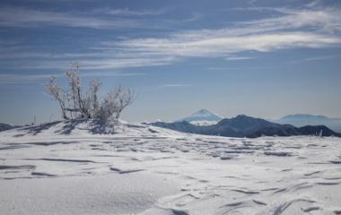 『初登り❢ 飯盛山~平沢山⛄新雪雪遊び✨』の画像