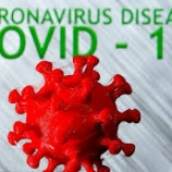 『米モデルナ社、新型コロナウイルスワクチン開発に期待』の画像