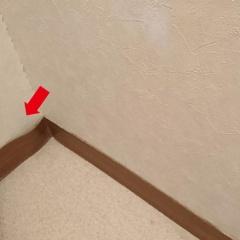 犬・猫の爪、掃除機の傷対策!巾木&腰板のニッチDIY