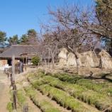 『1月の国営昭和記念公園Ⅱ;立川市』の画像