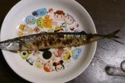 俺より秋刀魚上手に食べれるやついる?