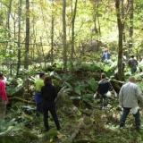 2008.10.11(土)モスバック主催キノコ狩りとキノコ料理尽くしと温泉のサムネイル
