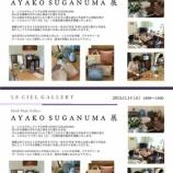 『AYAKO SUGANUMA展』の画像