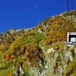 『「色ずく秋」』の画像