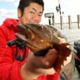 『10月23日 釣果 ロックフィッシュ50UP!! 沖ジギングは中止 』の画像